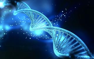 ADN-Baza-Bucuresti.jpg