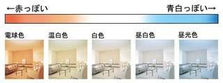 led_5.jpg